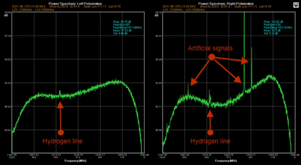 Cassiopea A recorded with SPIDER radio telescope: left and right polarization spectra with neutral Hydrogen line and artificial interferences